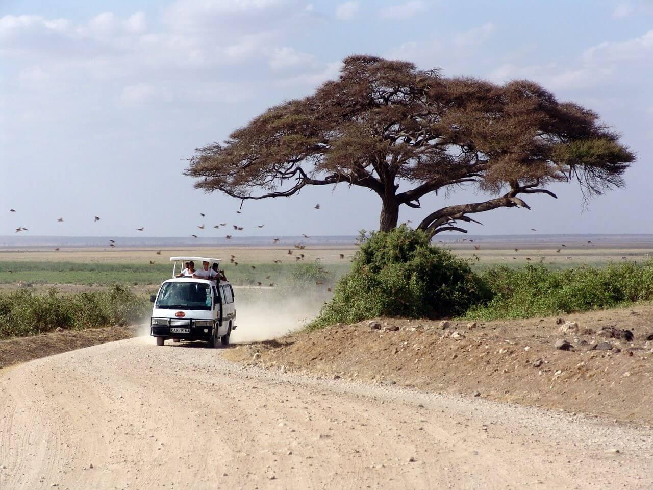 Le Kenya, une destination culturelle de premier choix
